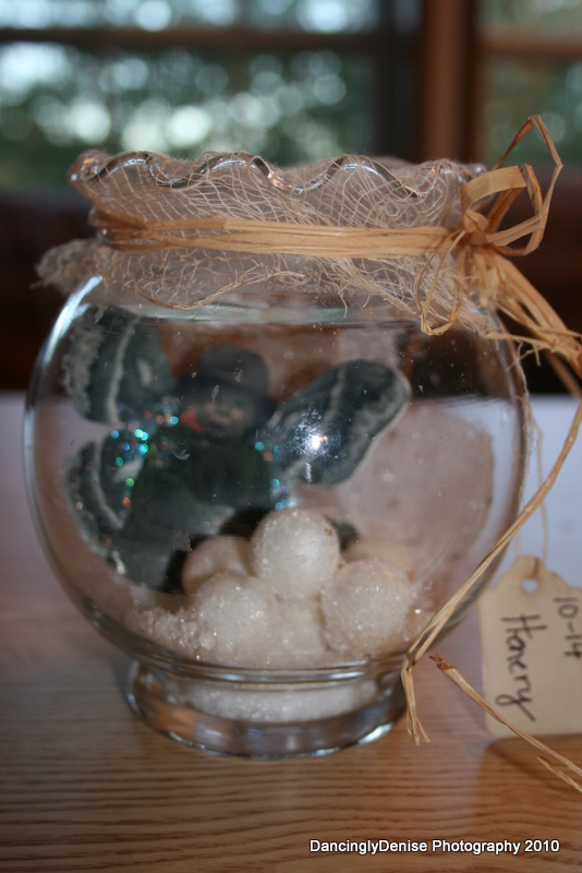 Fairy jars 023