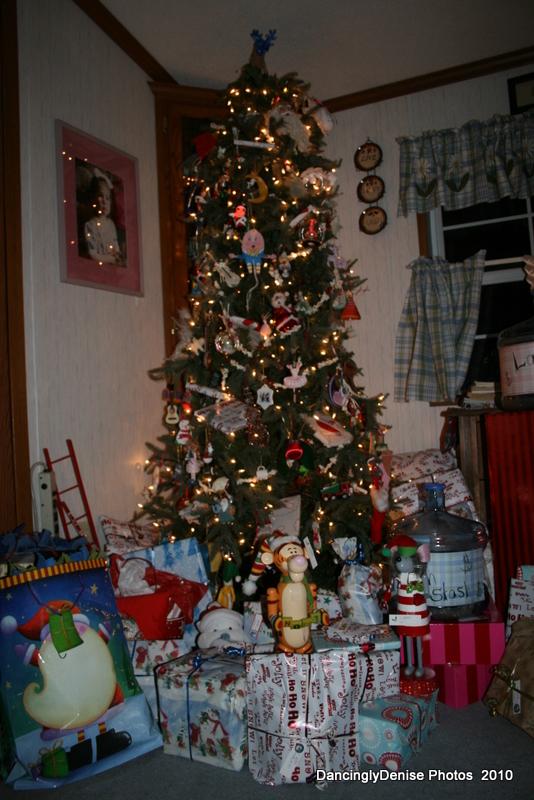 Christmas2010 041