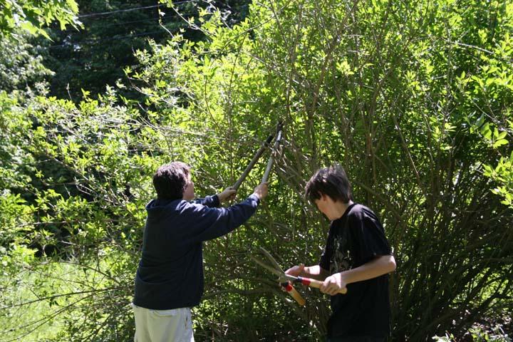 Summer2008_338